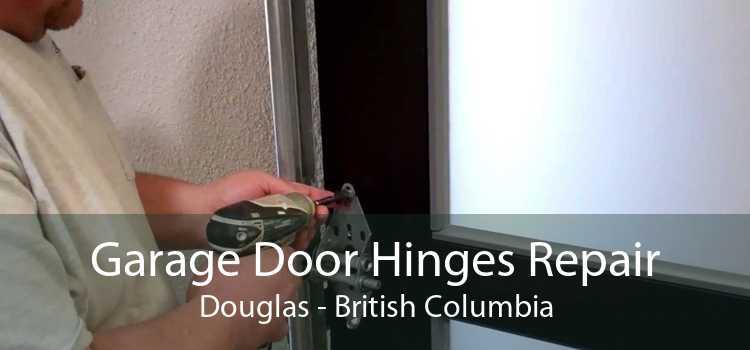Garage Door Hinges Repair Douglas - British Columbia