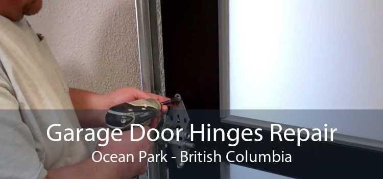Garage Door Hinges Repair Ocean Park - British Columbia