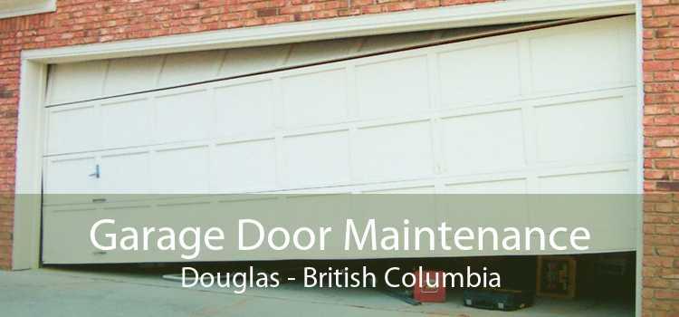 Garage Door Maintenance Douglas - British Columbia