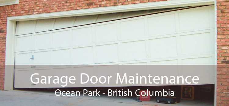 Garage Door Maintenance Ocean Park - British Columbia