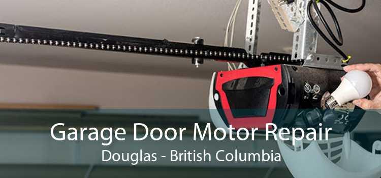 Garage Door Motor Repair Douglas - British Columbia