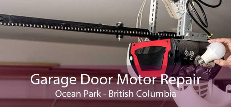 Garage Door Motor Repair Ocean Park - British Columbia