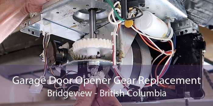 Garage Door Opener Gear Replacement Bridgeview - British Columbia