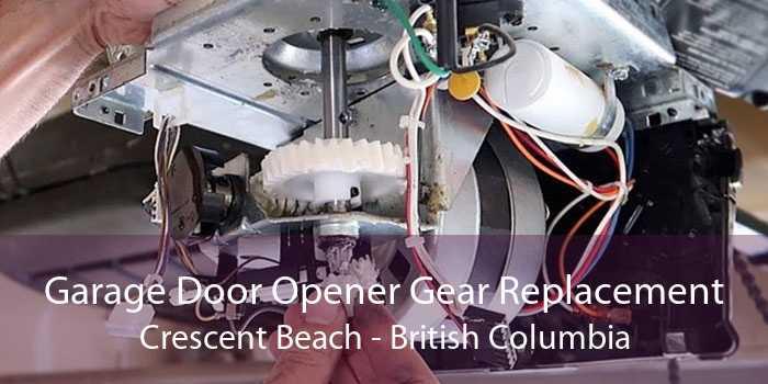 Garage Door Opener Gear Replacement Crescent Beach - British Columbia