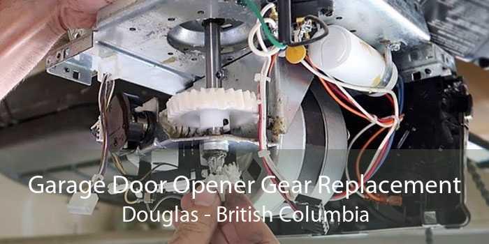 Garage Door Opener Gear Replacement Douglas - British Columbia