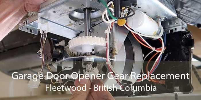 Garage Door Opener Gear Replacement Fleetwood - British Columbia