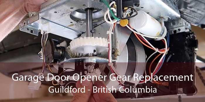 Garage Door Opener Gear Replacement Guildford - British Columbia