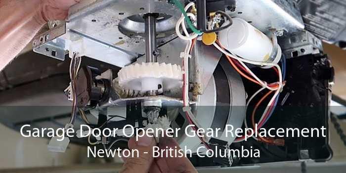 Garage Door Opener Gear Replacement Newton - British Columbia