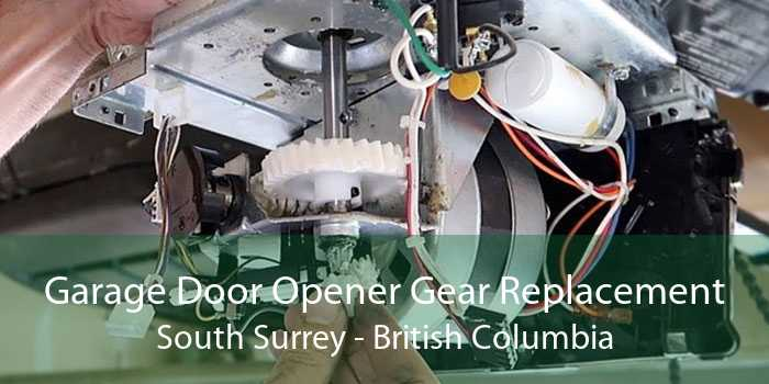 Garage Door Opener Gear Replacement South Surrey - British Columbia