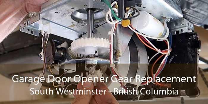 Garage Door Opener Gear Replacement South Westminster - British Columbia