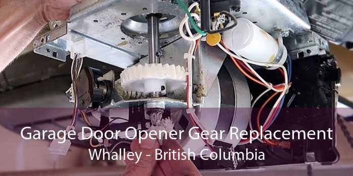 Garage Door Opener Gear Replacement Whalley - British Columbia