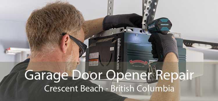 Garage Door Opener Repair Crescent Beach - British Columbia