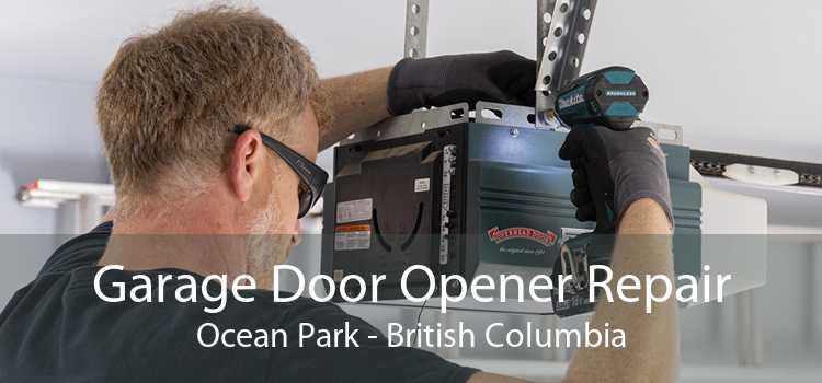 Garage Door Opener Repair Ocean Park - British Columbia