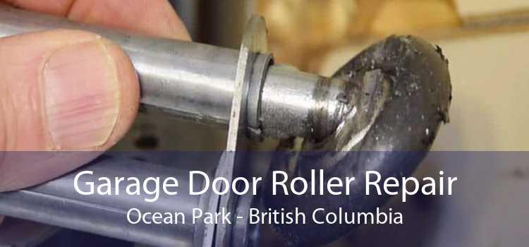 Garage Door Roller Repair Ocean Park - British Columbia
