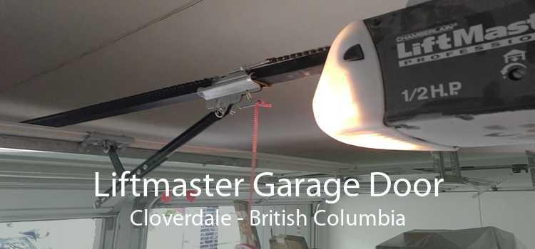 Liftmaster Garage Door Cloverdale - British Columbia