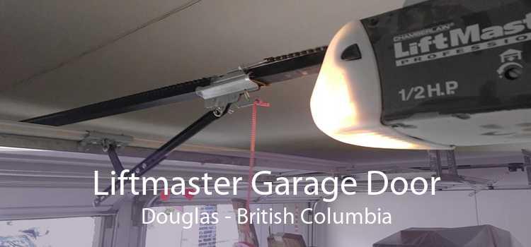 Liftmaster Garage Door Douglas - British Columbia