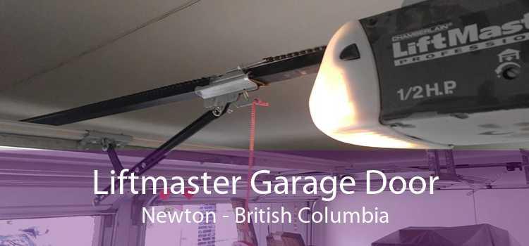 Liftmaster Garage Door Newton - British Columbia