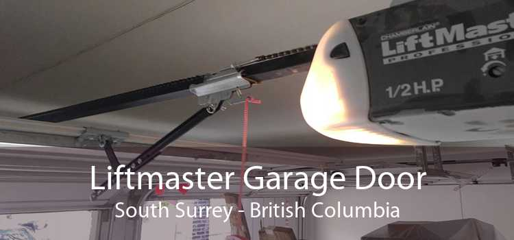 Liftmaster Garage Door South Surrey - British Columbia